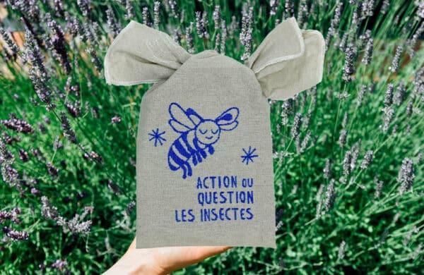 Jeu éco-responsable sur les insectes
