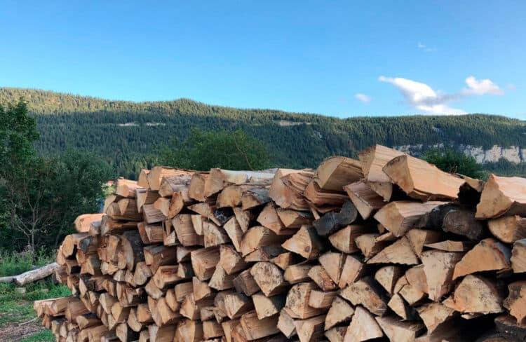 Bois coupé dans les montagnes du Jura